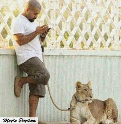 Mutlu Patilerr: Zengin Arapların Vahşi Hayvan Besleme Modası...