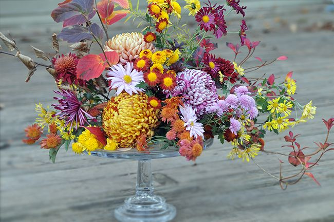 Growing with plants: 10 ROMANTIC WEDDING FLOWERS JUST WAITING TO BE REDISCOVERED