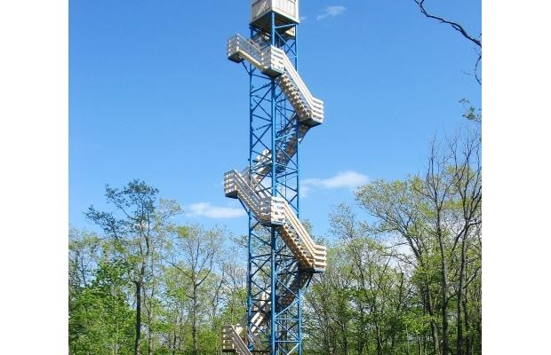 Close to home: Adrenalin rush at Lac-Cayamant observation tower
