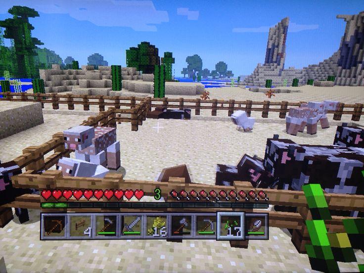 牧場作りたいですね。  #マインクラフトPS3 #マイクラ #PS3 #めぐもぐの気まぐれマイクラ日記
