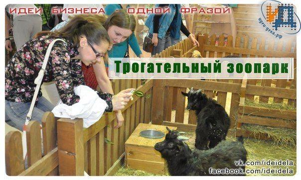 Идея для домашнего бизнеса - Трогательный зоопарк  У нас в Екатеринбурге такой есть. Предлагаю тем, кто живет в частном доме и возиться с животными, открыть подобное у себя. Конечно, размах будет не такой... Но современные дети даже корову с лошадкой только в книжках и по телеку видели, поэтому им будет интересно