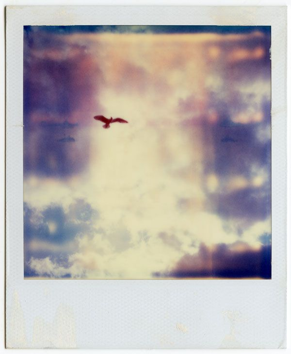 Pieces of the Moon series, polaroids by Mikael Kennedy