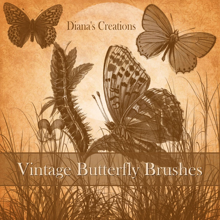 Vintage Butterfly Brushes by DianazDesignz.deviantart.com on @deviantART