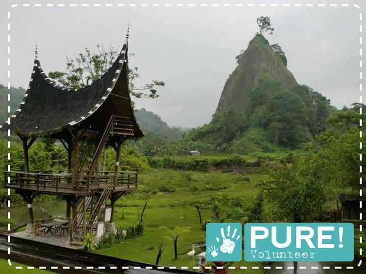 Vrijwilligerswerk doen op het prachtige Sumatra? Bekijk de vacature op onze website!