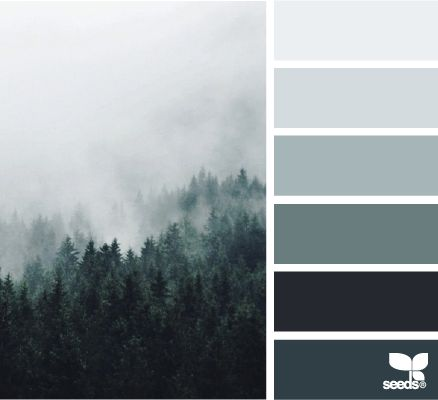 color fog | design seeds | Bloglovin