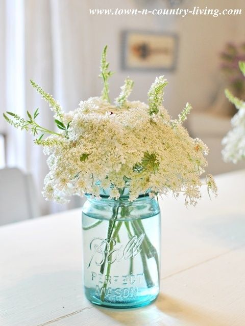 Simple decorating details - Queen Anne's Lace in a blue Ball mason jar via Town and Country Living