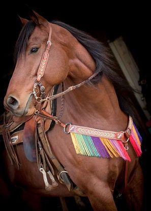 Rainbow Beaded Tack Set