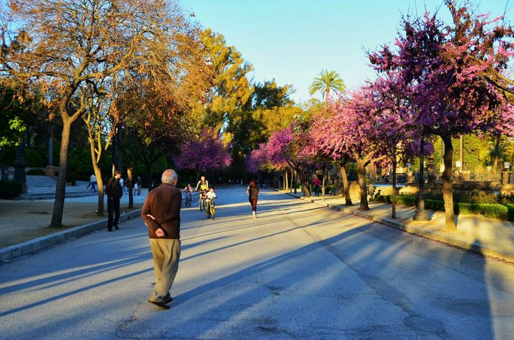 Spring's Arrival | photochameleon.com