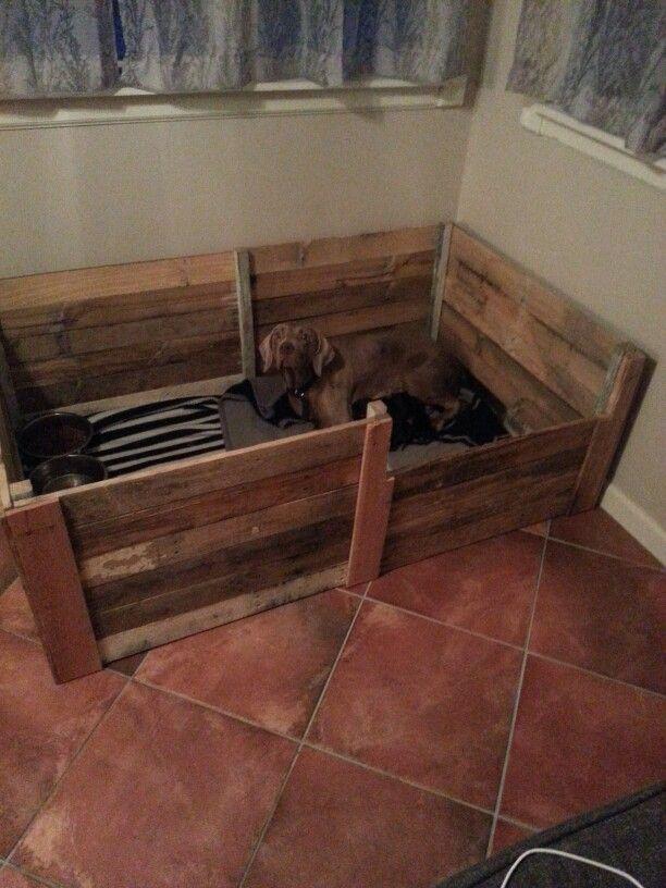 Pallet Welping Box - Weimerwiner