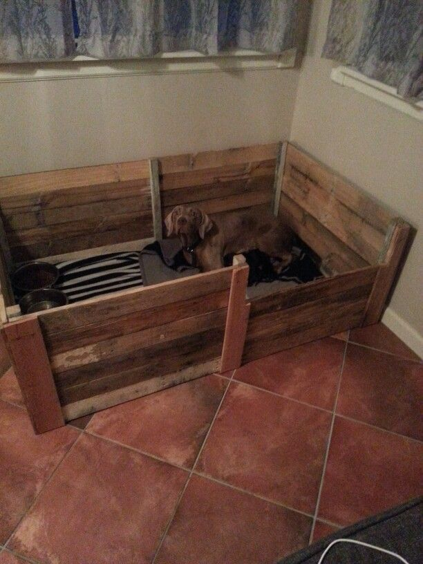 17 Best Images About A Whelping Box On Pinterest For