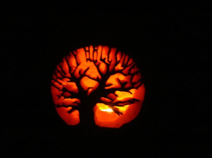 pumpkin carving ideas | Pumpkin carving ideas - AnandTech Forums