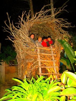 16 Best Images About Spirit Nests On Pinterest