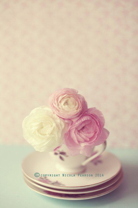 flower photography photo print stilllife photo  by secretgardentwo, £9.70