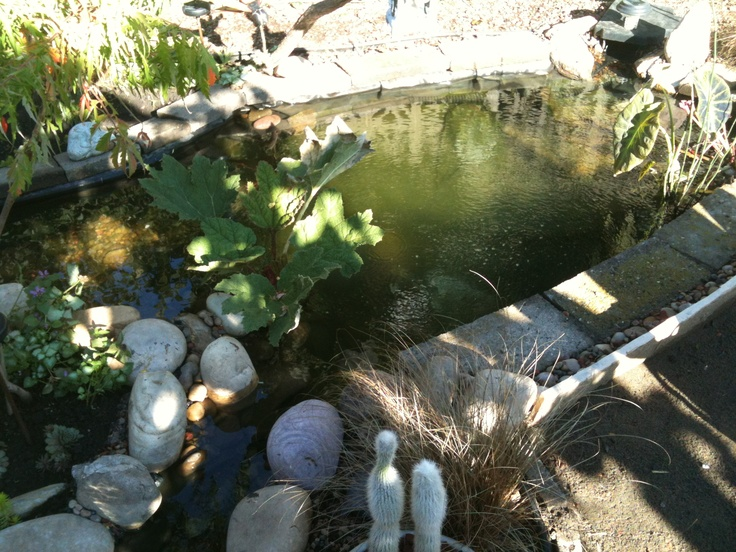 17 Best Images About Waterponds Water Features On
