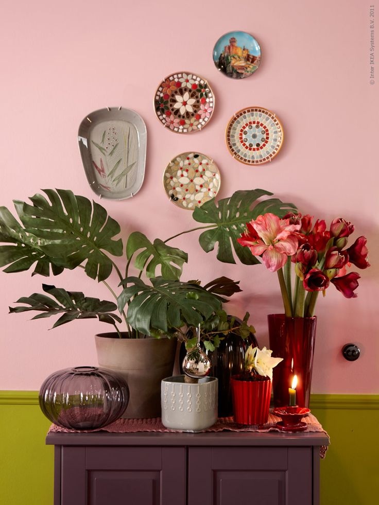 Dual tone wall. Plants. Plate wall. LOVE it all.