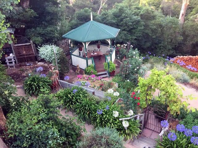 17 Best 1000 images about Garden Photo of the Day on Pinterest