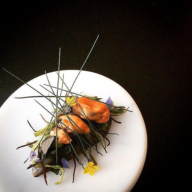 "🍶🐚🍶""Sakamushi""🍶🐚🍶. . Steamed mussels with Sake,seaweed(Wakame and Hijiki) and fermented garlic. . #theartofplating #gastroart #chefstalk #chefsofinstagram #expertfoods #hipsterfoodofficial #foodstarz #lovefish #kresios #dontshootthechef #seafood #shellfish #mussels #tadashitakayama #sakamushi #セトガイ #ムール貝 #酒蒸し #海藻 #黒ニンニク #新鮮 #シーフード"