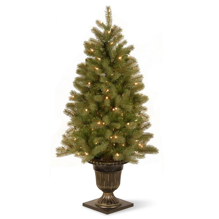 National Tree Company 4-ft. Douglas Fir Entrance Pre-Lit Artificial Christmas Tree, Green
