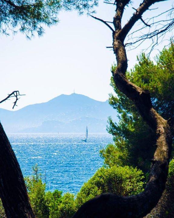 En direct du #blog {lien dans le profil} : #île Sainte-Marguerite ou Saint-Honorat ? Au bord de la #Méditerranée face à la baie de #Cannes et au massif de l'#Estérel échappez-vous sur l'archipel préservé des #îles de #Lerins ! Hotels-live.com via https: