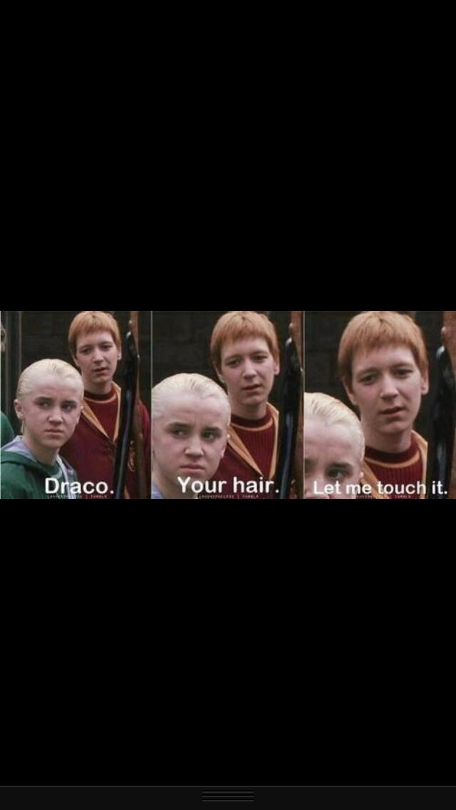 everyone needs a little Harry potter humor in your life