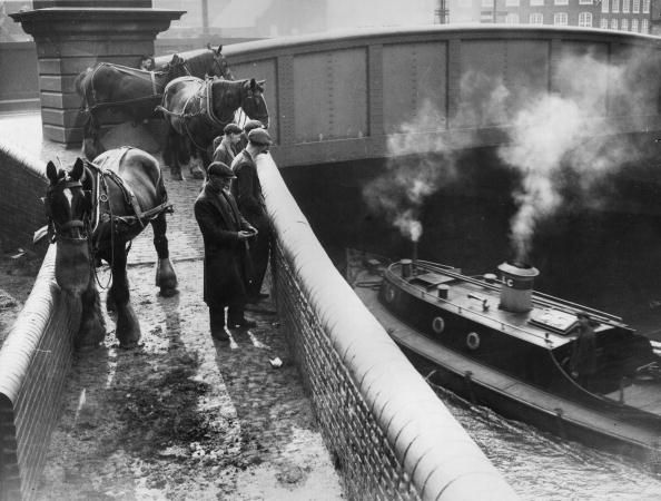 "Caption: ""11th August 1936: Barge horses waiting by Bow Bridge for their barges"""
