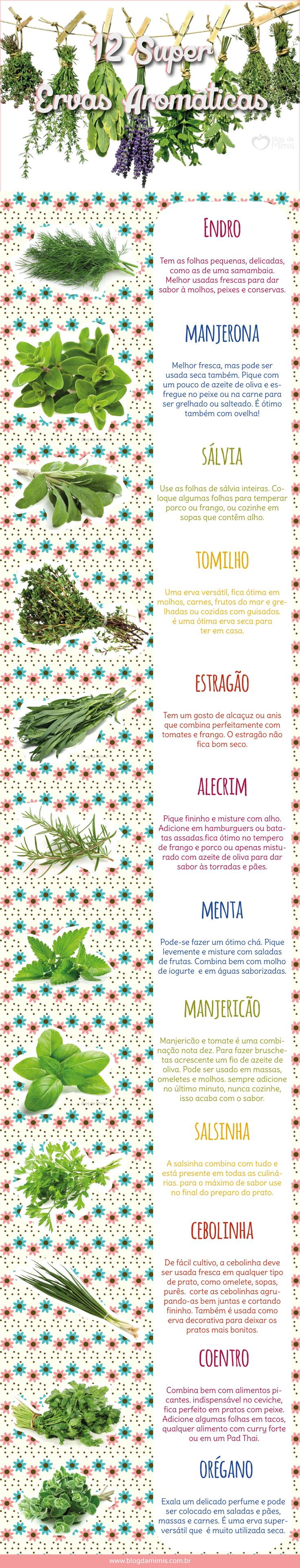 12 Super Ervas Aromáticas - Blog da Mimis - O segredo da boa comida é o tempero! Que delícia!