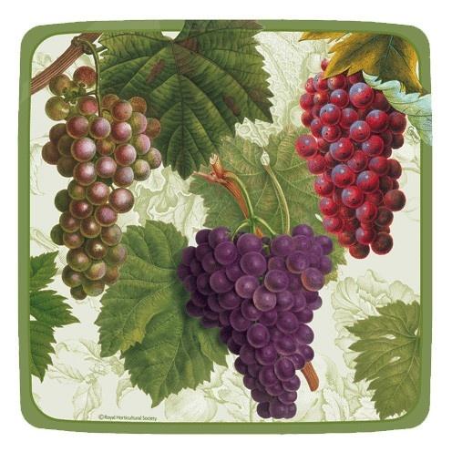 Arbor Ivory 7 inch Square Plates - Wine - Party Themes PlatesAndNapkins.com  sc 1 st  Pinterest & 43 best Wine Party Supplies images on Pinterest   Ideas para fiestas ...