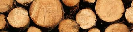 Kiln dried firewood, hardwood suppliers, hardwood logs for sale, fire wood for sale, kiln dried hardwood logs, seasoned hardwood logs, firewood for sale - http://buyfirewooddirect.co.uk/