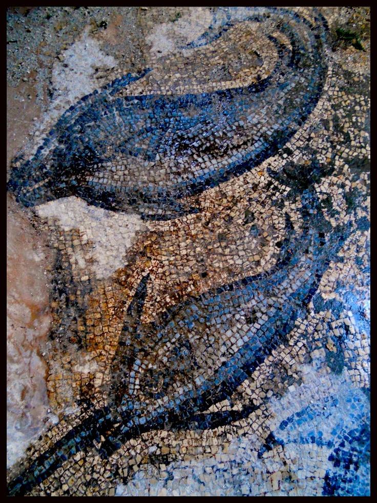 Dolphins Mosaics from Bitez
