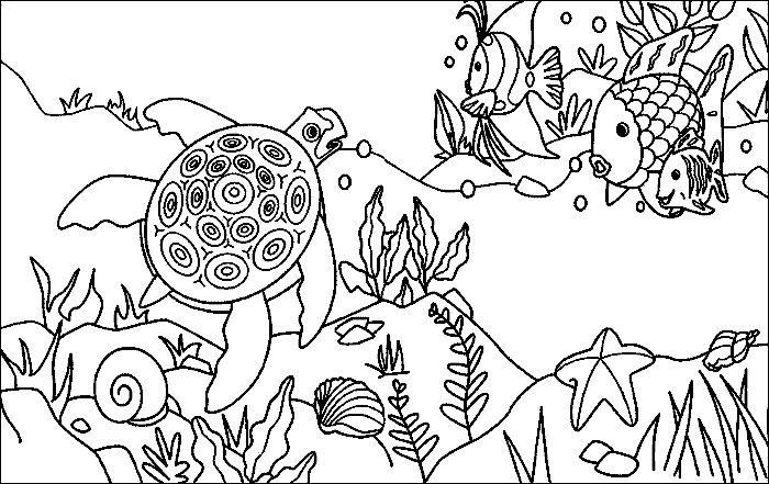 httpwwwpeppitextdemalvorlagen20r16regenbogenfisch