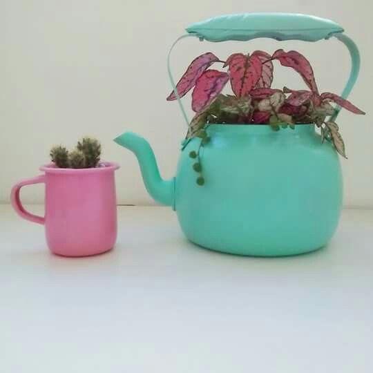 Verde y rosa.