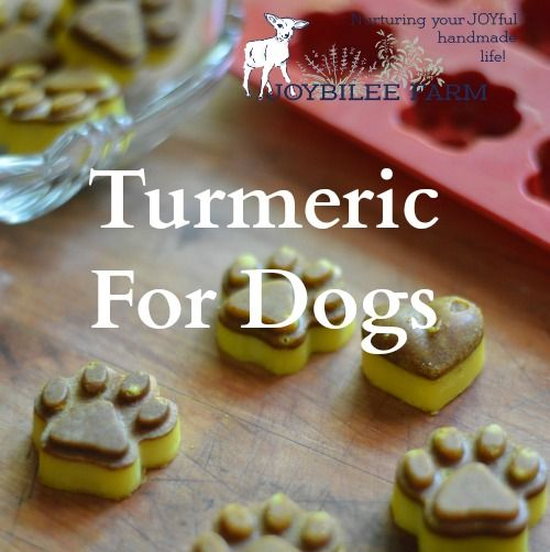 Joybilee Farm Turmeric Health Benefits You might take turmeric already for your own health. If you don't yet, consider these health benefits of turmeric. Turmeric is: Antifungal Anti-Inflammatory An