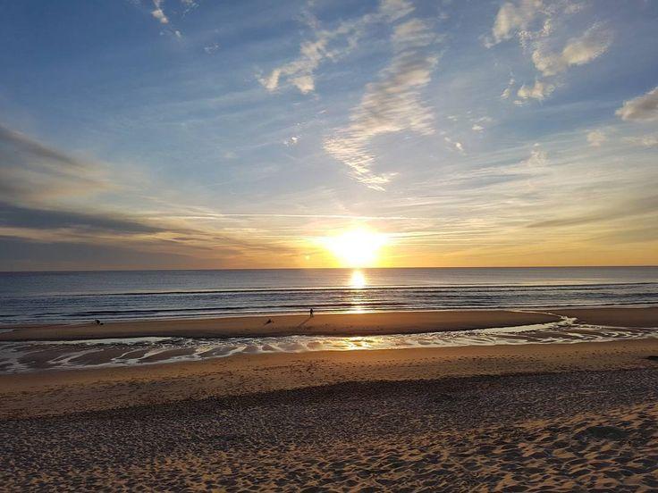 Quand tu as la chance de vivre au bord de l'océan <3 #ocean #biscarosse #plage #paradise #photography #paysage #couchedesoleil #soleil #happyday #reallife #surf #wakeboard #paddle #bodyboard #breakdance http://tipsrazzi.com/ipost/1511096622854277329/?code=BT4fl9ShYjR