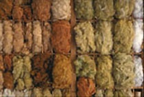 Your retail and wholesale source for Foxfibre® cotton sliver, yarn, and fabric.
