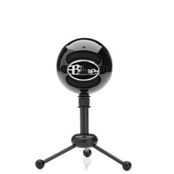 Blue Snowball mic. It sounds sooo great!