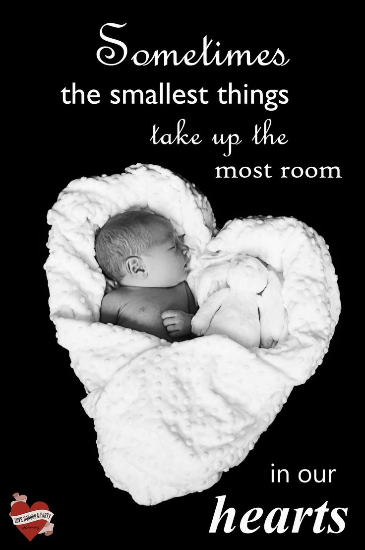 Best 25 Newborn quotes ideas on Pinterest