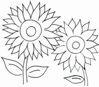 Gambar Bunga Kartun Hitam Putih - Mewarnai Bunga Matahari