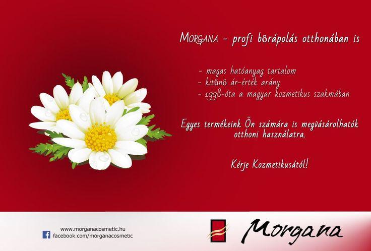 új plakátunk! :)