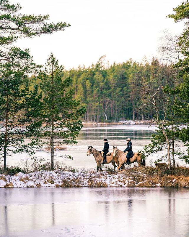 Horseback riding in Tiveden. What's your favorite outdoor adventure?  #horse #riding #tiveden #sweden #visitsweden