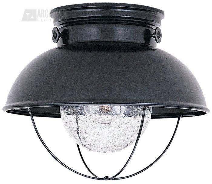 Sea Gull Lighting 8869 Sebring Transitional Outdoor Flush Mount Ceiling Light SG-8869, for pantry