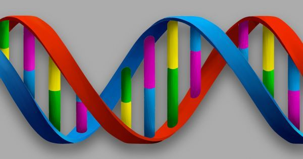 Researchers from the University of Montreal have constructed a 5 nanometer wide DNA nanothermometer that could lead to measuring temperature for nanotechnologies.