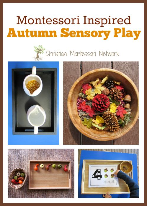 A fun collection of Montessori inspired Autumn sensory play activities for toddlers and preschoolers to enjoy! - www.christianmontessorinetwork.com