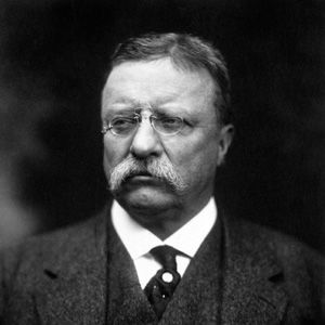 importance of theodore roosevelt in the development The theodore roosevelt is one of the most popular his importance to america can be witnessed with his monument theodore (tr) roosevelt and james madison.