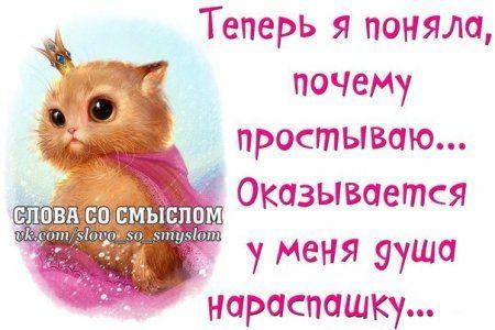 Прикольные фразочки в картинках №9114 » RadioNetPlus.ru развлекательный портал