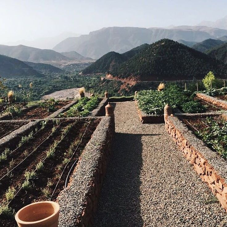 we want a kitchen garden like this (and the view of course) 🌶#BoSoukGardens