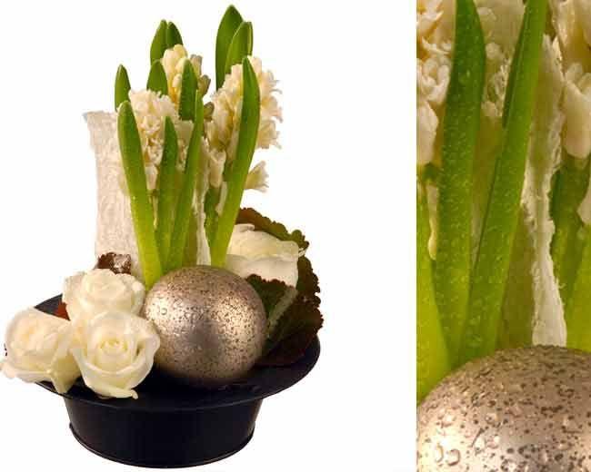 les 25 meilleures id es de la cat gorie jacinthe fleur sur pinterest bulbes bulbe fleur et. Black Bedroom Furniture Sets. Home Design Ideas