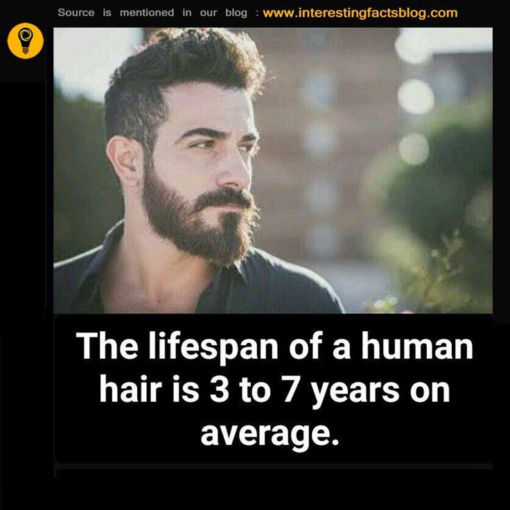 Do You Know Lifespan of Human Hair...?