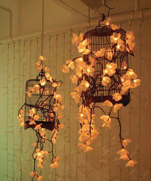 Birdcages strung with flower lights