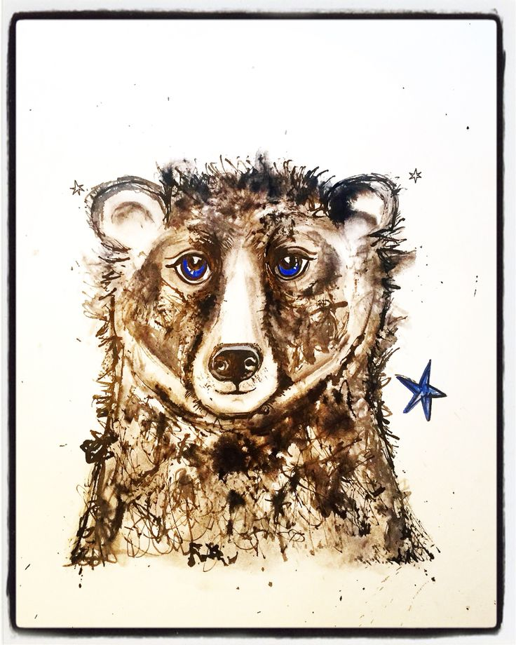 Grizzly Bear ink drawing by Lizzie Reakes