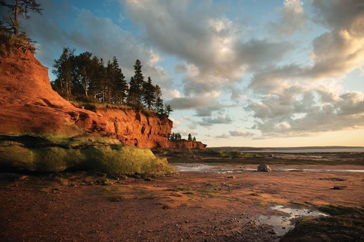 Make plans to take a walk on the ocean floor this year in Nova Scotia.
